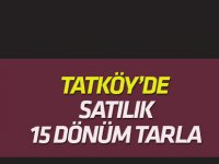 Tatköy'de satılık 15  dönüm tarla