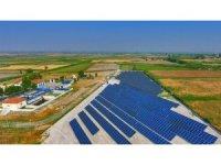 Denizli Büyükşehir Belediyesi'nin güneş tarlaları büyüyor