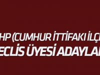 İşte MHP Konya Meclis üyesi adayları