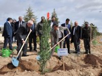 Rektör Zorlu: 4 yıl içinde kampüsümüzün tamamı ağaçlandırılacak