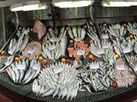Av yasağı başladı... Balık tezgahlarında fiyatlar yükseldi!