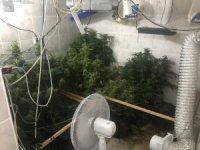 Kuşadası'nda uyuşturucu imalathanesine baskın: 2 gözaltı