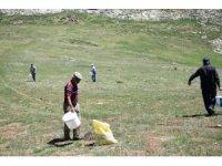 Antalya İl Tarım ve Orman Müdürlüğü'nden mera ıslah çalışmaları