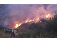 Nişancı'dan orman yangını uyarısı