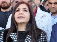Van Büyükşehir Belediye Başkanı Ertan hakkında soruşturma