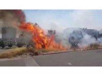 Kahramanmaraş'ta zeytinlikte yangın