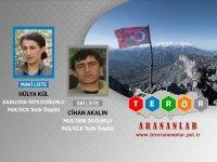 Bingöl'de 8 terörist etkisiz hale getirildi, 2'si ödüllü listede çıktı