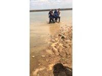 Ergani'de atıyla gezen genç, baraj gölüne düşerek boğuldu