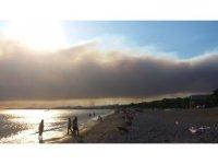 GÜNCELLEME - Urla'da orman yangını