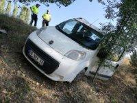 Hafif ticari araç yoldan çıktı : 1 yaralı