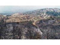 İzmir'de yangını söndürme çalışmaları sürüyor