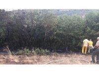 Balıkesir'de çıkan orman yangını 200 metrekarede kontrol altına alındı