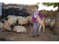 Siirtli kadın çiftçinin projesi Türkiye ikincisi oldu