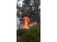 Yıldırım düştü 20 yerde orman yangını çıktı
