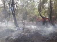 Kumluca'da orman yangını
