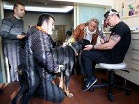 Pakdemirli'nin sahip çıktığı Bobo katarakt ameliyatı oldu