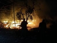 Bursa'da bağ evinden zeytin tarlasına sıçrayan yangın söndürüldü