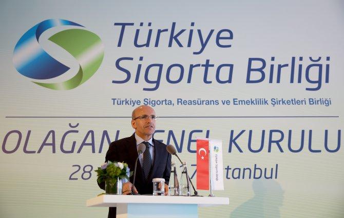 Başbakan Yardımcısı Şimşek: (1)