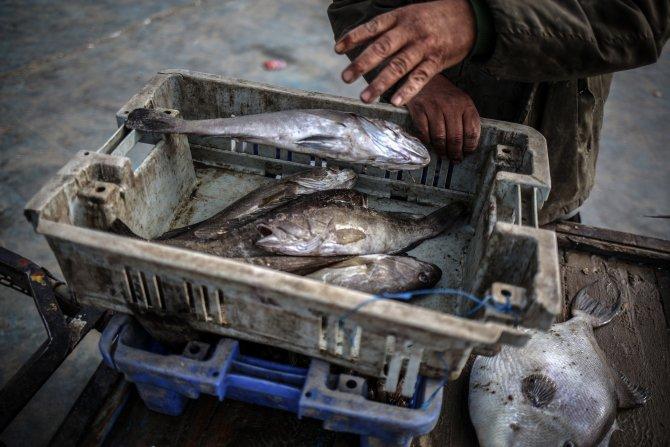"""Gazzeli balıkçılar """"avlanma mesafesinden"""" yakınıyor"""