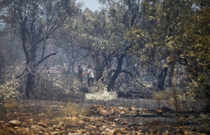GÜNCELLEME - Antalya'da yangın