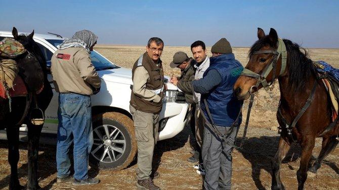 Konya'da kaçak avcılığa ceza