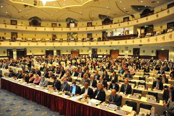 Uluslararası Arakan Konferansı