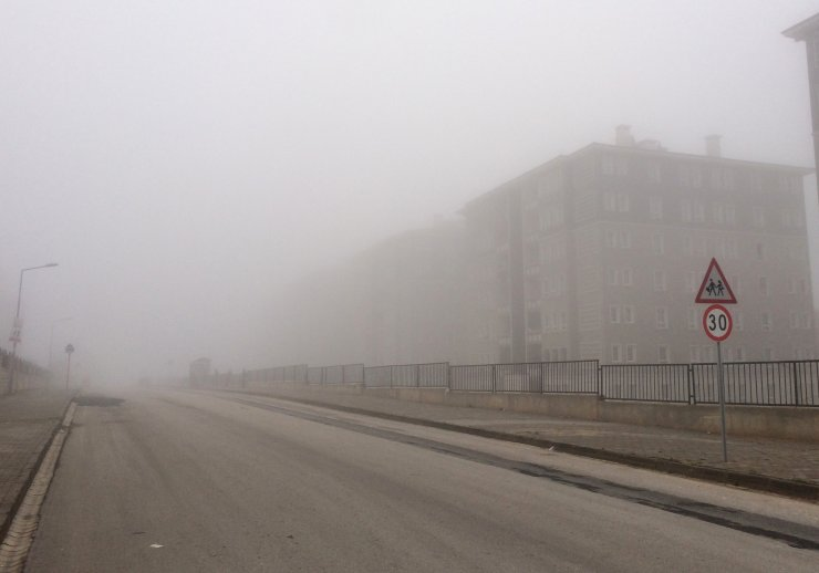 Güneydoğu'da sis