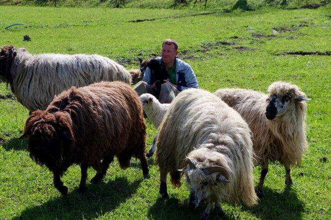 Huzuru Köyde Bulanlar - Muhasebeciliği bıraktı köyünde hayvancılık yapıyor