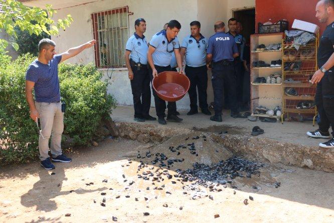 Antalya'da sağlıksız koşullardaki midyelere el konuldu
