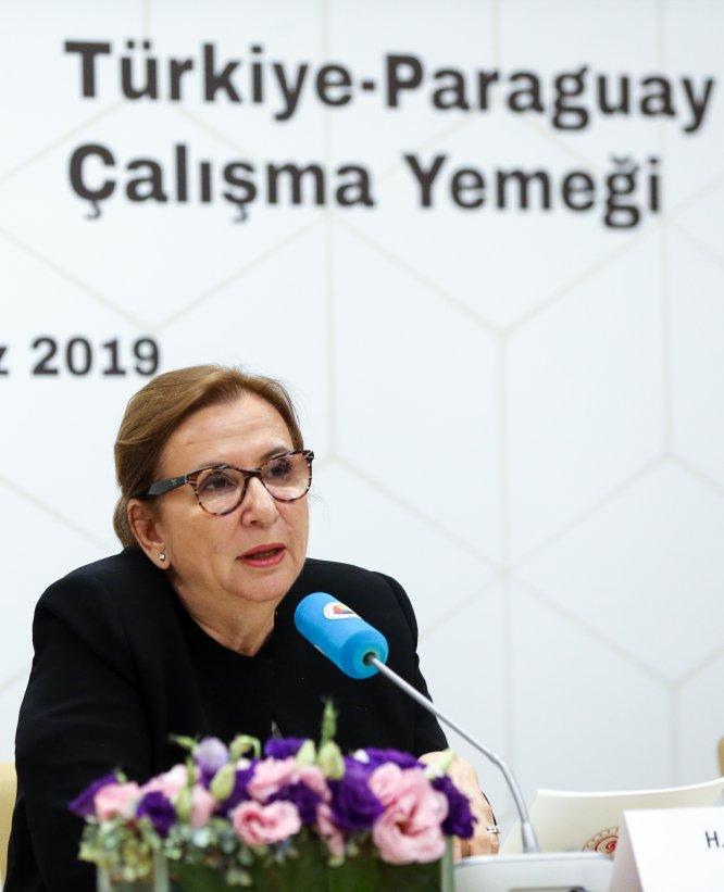 Türkiye-Paraguay Çalışma Yemeği