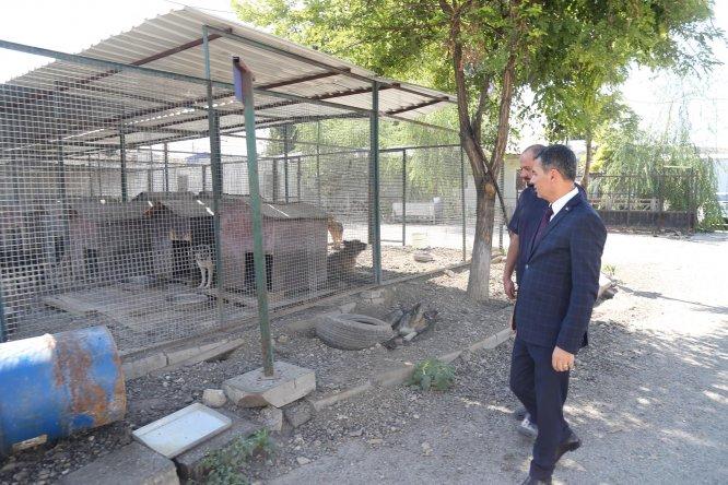 Gölbaşı'ndaki hayvan barınağı taşınsın talebi