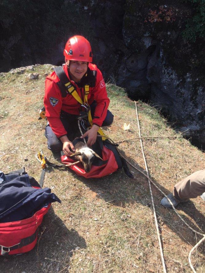 Kayalıklardan düşen kuzusunu kurtarmaya çalışan çoban yaralandı