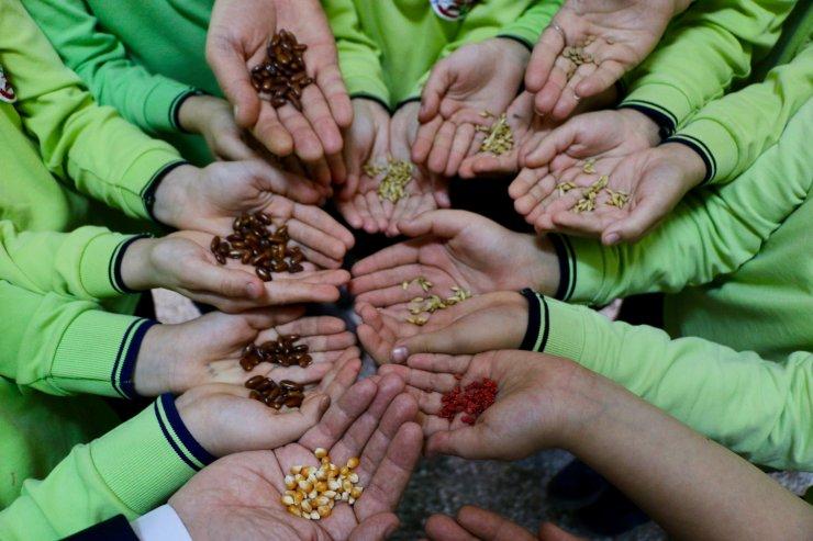 """Biyolojik çeşitliliği okulda oluşturulan """"tohum bankası""""nda öğreniyorlar"""