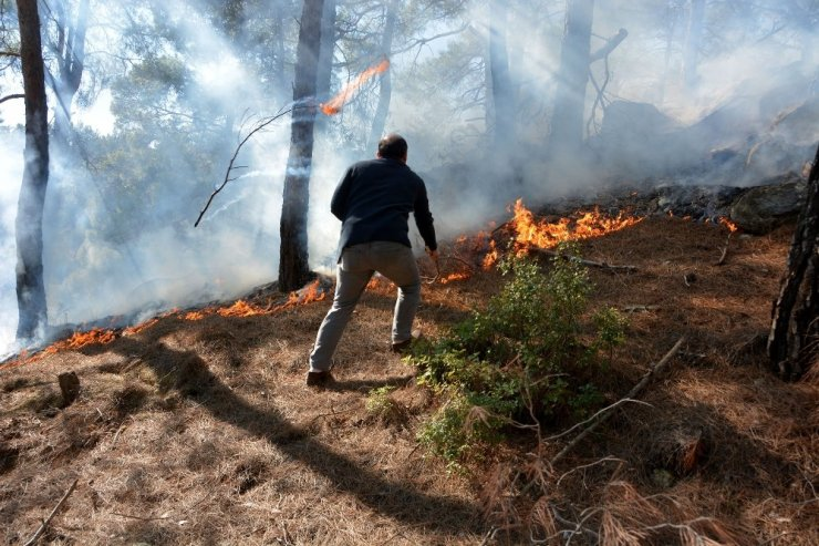 Seydikemer'de kış ortasında orman yangını