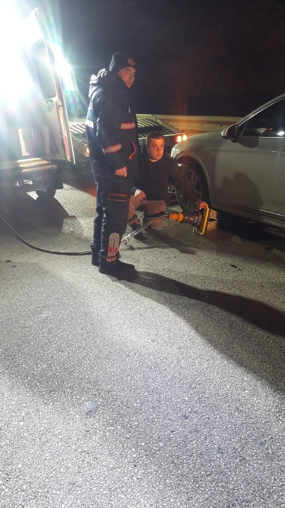 Aniden yola çıkan domuza otomobil çarptı