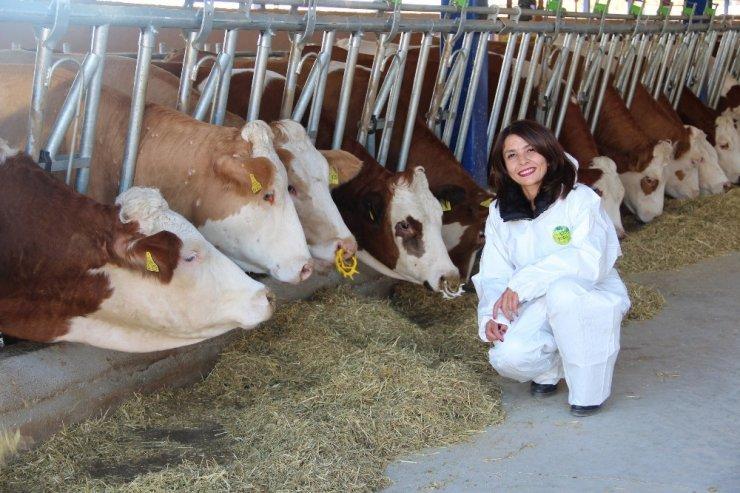 Aydın'ın 49 kırsal kalkınma projesine 24 milyonluk hibe desteği