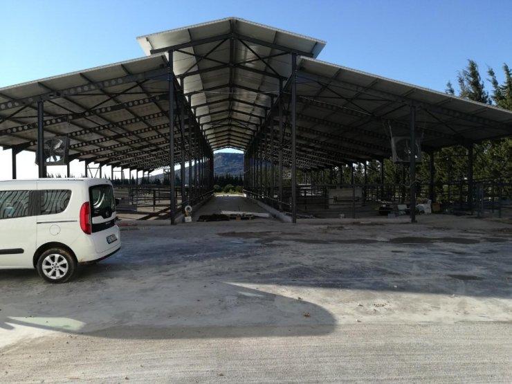 Kırsal Ekonomik Yatırım Projesi kapsamında Antalya'ya 32 milyon TL hibe