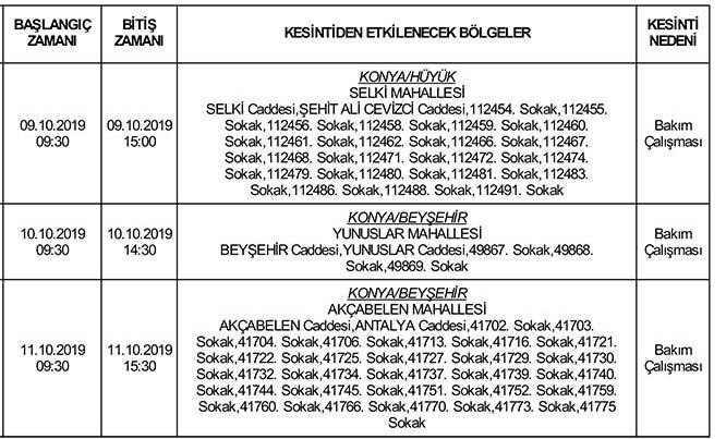 ilan-copy-041.jpg