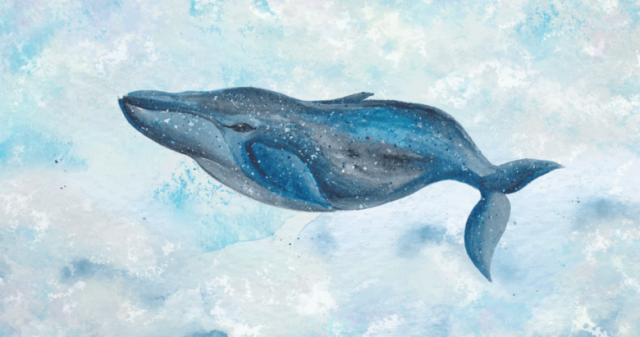 mavi-balina--(1).png