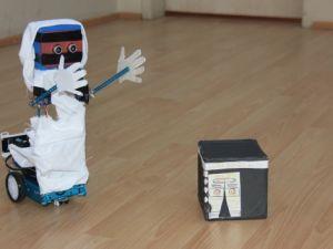 Bu robot diğerlerinden çok farklı