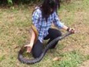 Uçarak yılanı yakalayan kadın
