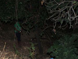 Köse ailesinin kaderi ağaç dibinde ölmek
