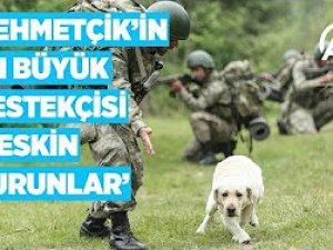 Keskin burunlar Mehmetçik'i hain tuzaklardan kurtardı