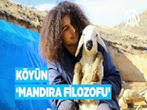 Köyünün 'Mandıra filozofu' koyunlarının çobanı oldu